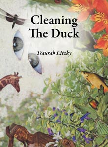 cover art of Tsaurah Litzky's Cleaning the Duck